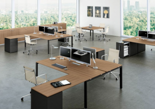 bureaux opératifs pour entreprise en bois brut