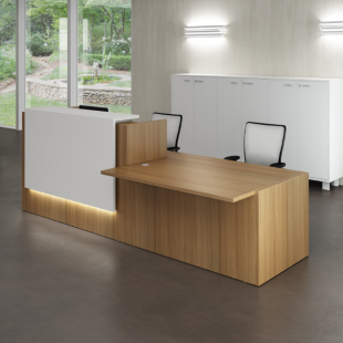 comptoir d'accueil spacieux en bois brut