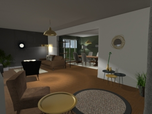 aménagement et objets de décoration pour habitation privée